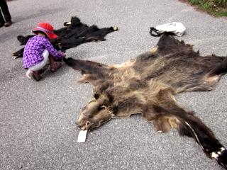 子供と熊の毛皮
