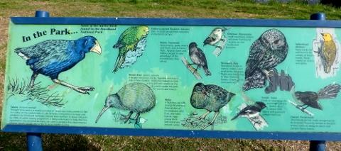 鳥の案内板