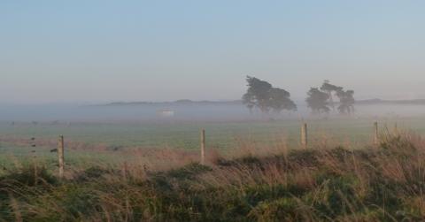 朝霧のかかった風景