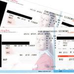 オーストリアから日本への搭乗券