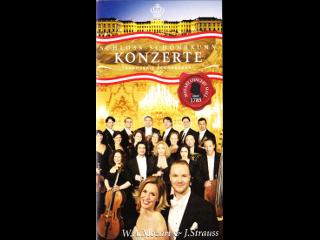 ウィーンのコンサートのパンフレット