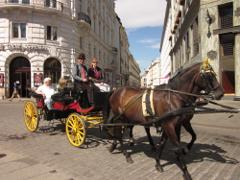 馬車でのウィーン観光