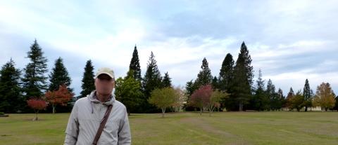 公園の中の男