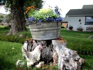 鶏の置物がある植木鉢