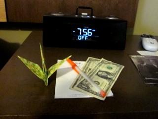 ドルと折鶴