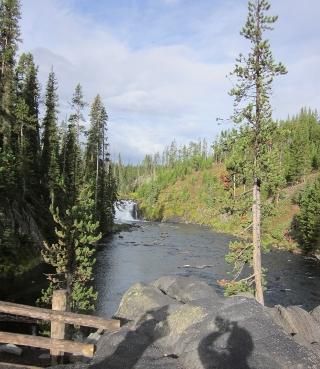 イエローストーンを出て目にする森と川の融合