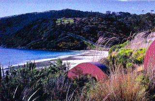 丘の上から見るスチュワート島の浜辺