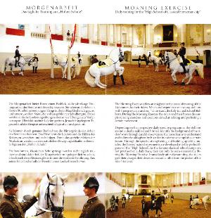 白いリピッツァ馬がワルツの音楽に合わせて動けるように訓練を受けている様子のパンフレット