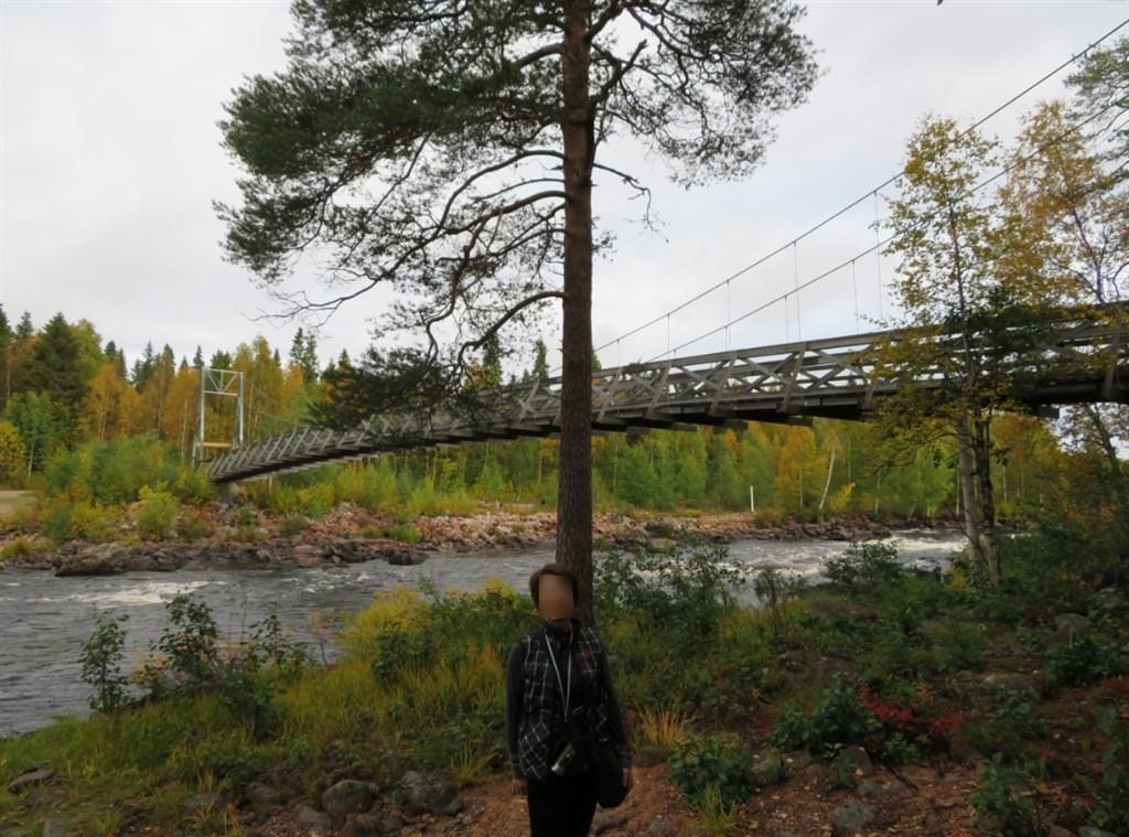 一本松と橋