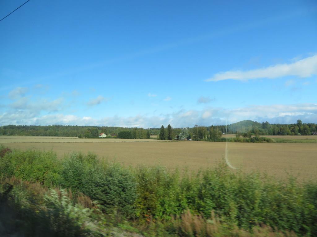 車窓からの田園風景