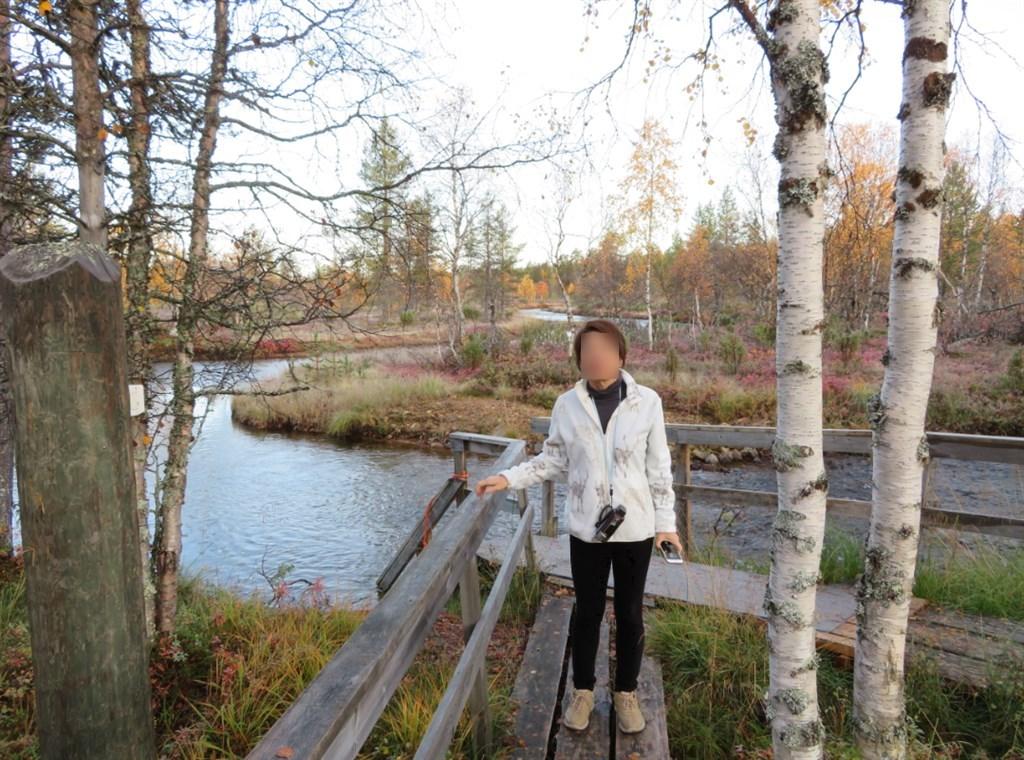 川と白樺と私