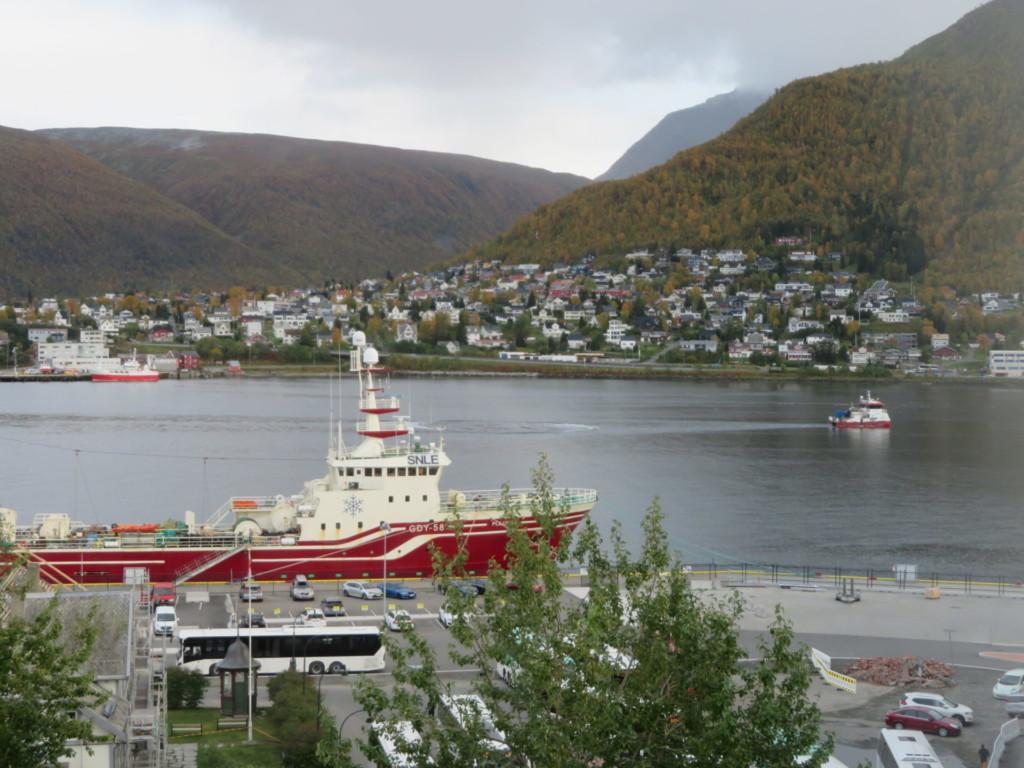 赤と白の船