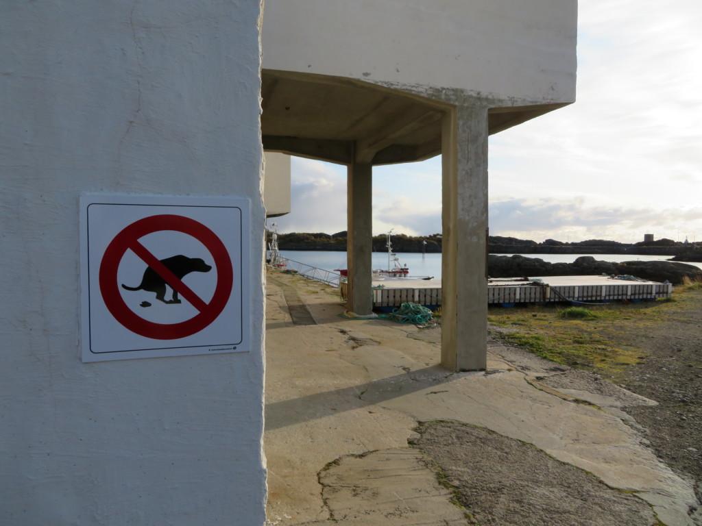 犬のウンチ禁止の看板